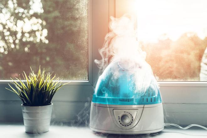 Muốn hệ miễn dịch khoẻ mạnh và phòng ngừa COVID-19, chuyên gia khuyến cáo nên để độ ẩm trong nhà từ 40-60%